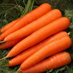 Как сварить морковь в микроволновке