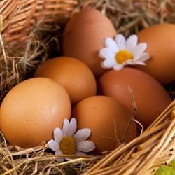 Чтобы сырые яйца хранились дольше