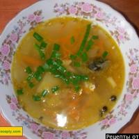 Суп из рыбных консервов сайра