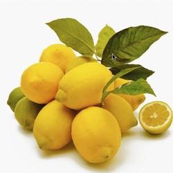 Как дольше сохранить лимоны свежими?