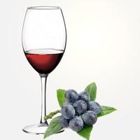 Домашнее вино из терновника